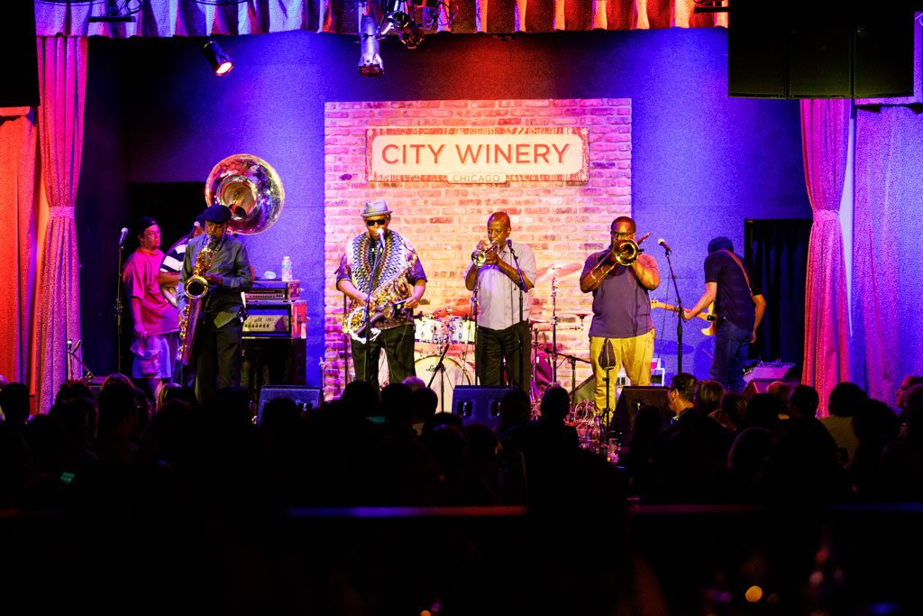 professional festival photography at city winery in chicago